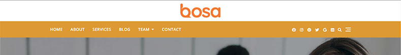 This image has an empty alt attribute; its file name is bosa-header-layout9.jpg